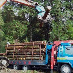 射庭林業 有限会社2