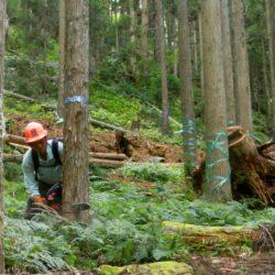高島市森林組合3